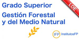Grado Superior Gestión Forestal y del Medio Natural